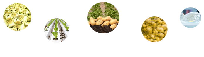 Header of East Africa potato value chain knowledge sharing portal